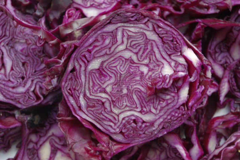 red-cabbage-1338061_1920